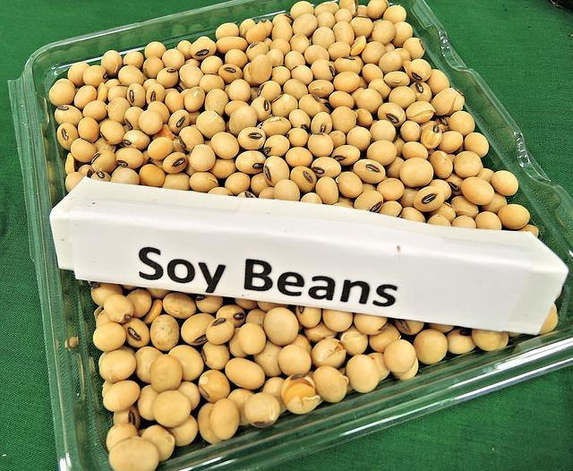 soy-beans-968986_640